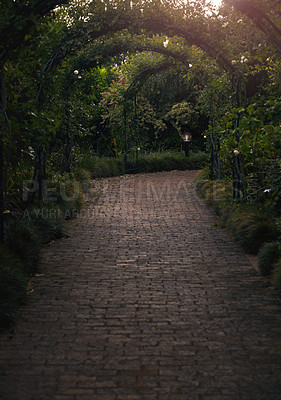 Buy stock photo Still life shot of a archway in a garden