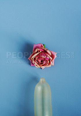 Buy stock photo Studio shot of a blown up condom and a flowerhead against a blue background