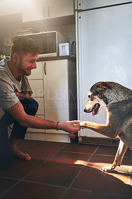 Buy stock photo Cropped shot of a cheerful young man shaking his adorable dog's paw inside of the kitchen during the day