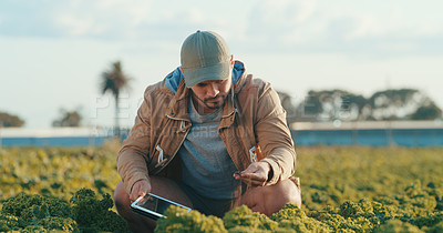 Buy stock photo Cropped shot of a handsome young male farmer inspecting the soil in a crop field