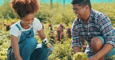 Buy stock photo Cropped shot of two young farmers working together in a crop field during the day