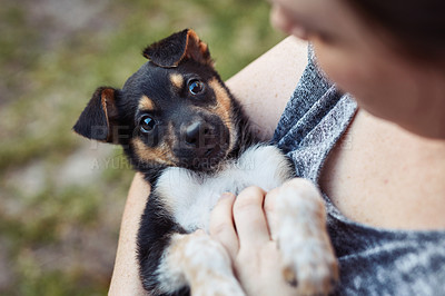 Buy stock photo Cropped shot of a woman spending time with her adorable little puppy outside