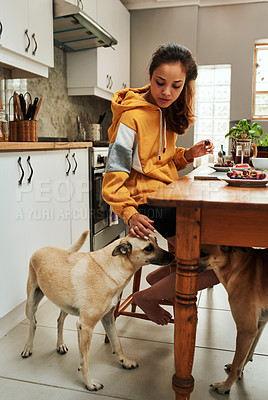 Buy stock photo Shot of a woman spending time with her dog while having breakfast