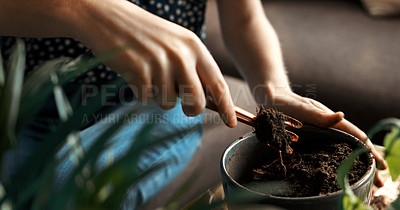 Buy stock photo Cropped shot of a woman preparing the soil in a pot before repotting a plant