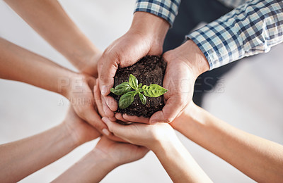Buy stock photo Closeup shot of a group of unrecognisable businesspeople holding a plant growing in soil