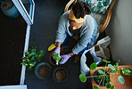 Making home a green haven