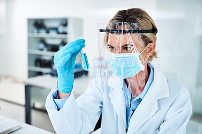 Buy stock photo Shot of a mature scientist analysing samples in a lab