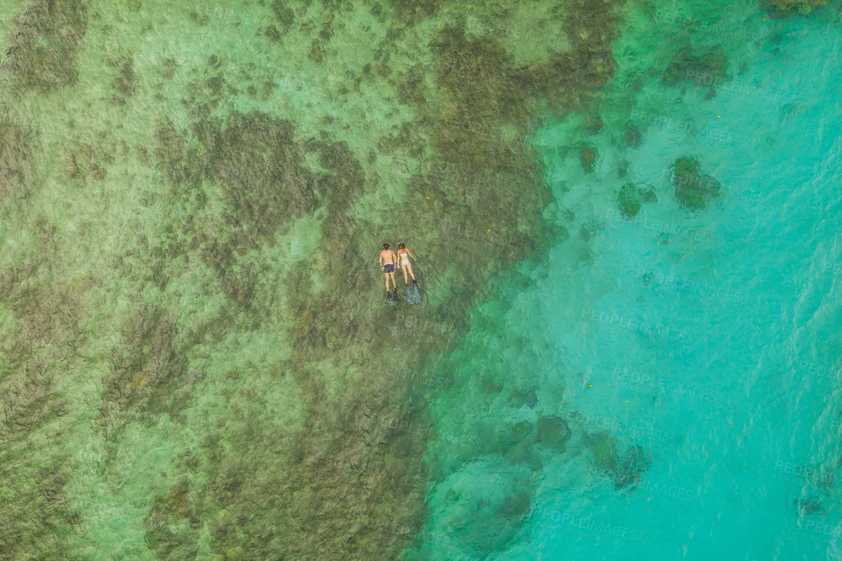 Buy stock photo High angle shot of an unrecognizable couple swimming in the waters of Raja Ampat