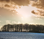 Wintertime - countryside in Denmark