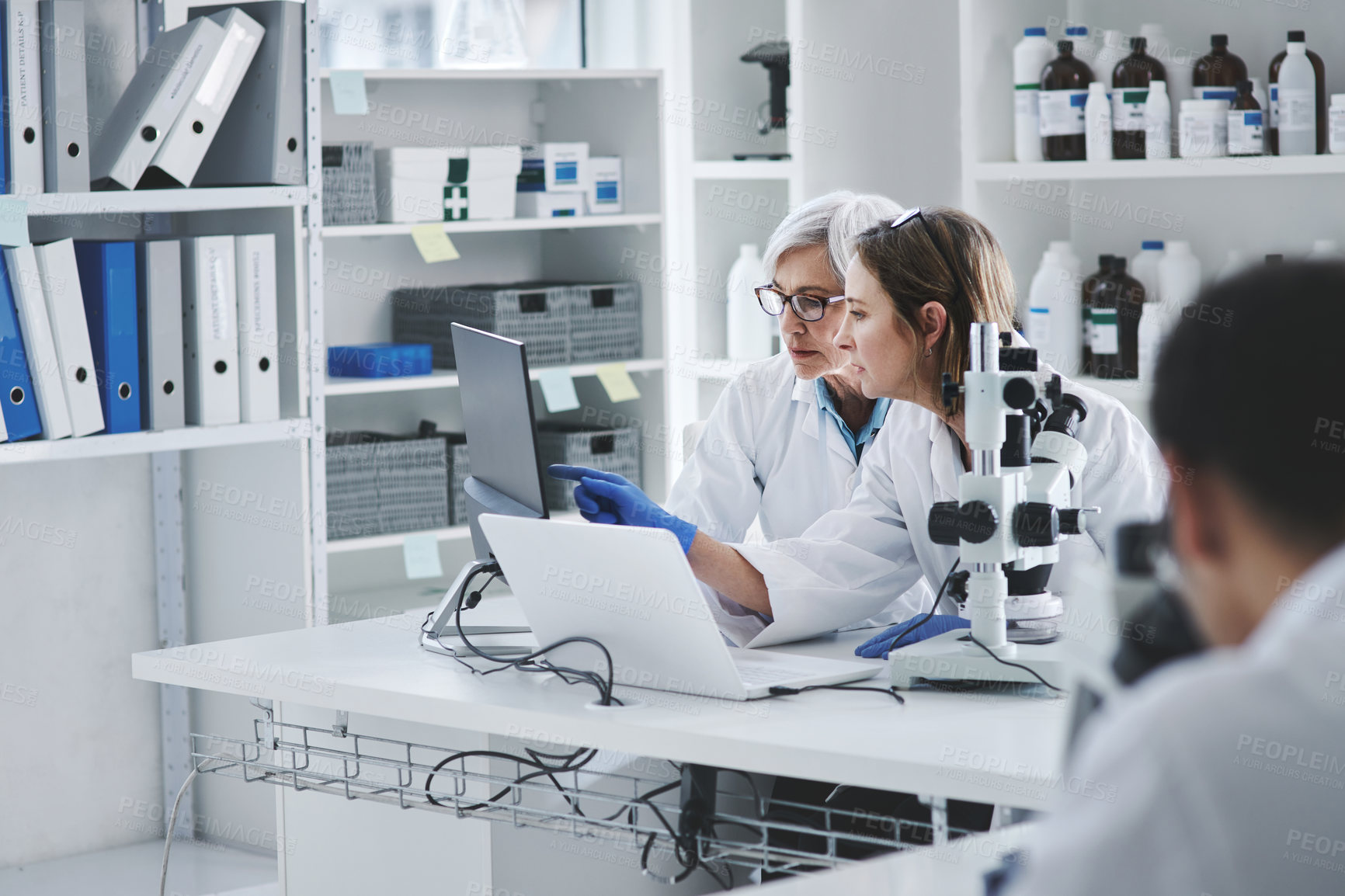 Buy stock photo Shot of two mature scientists working together on a computer in a lab