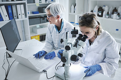 Buy stock photo Shot of two mature scientists working in a lab
