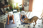 Are you sure you're doing downward dog right?