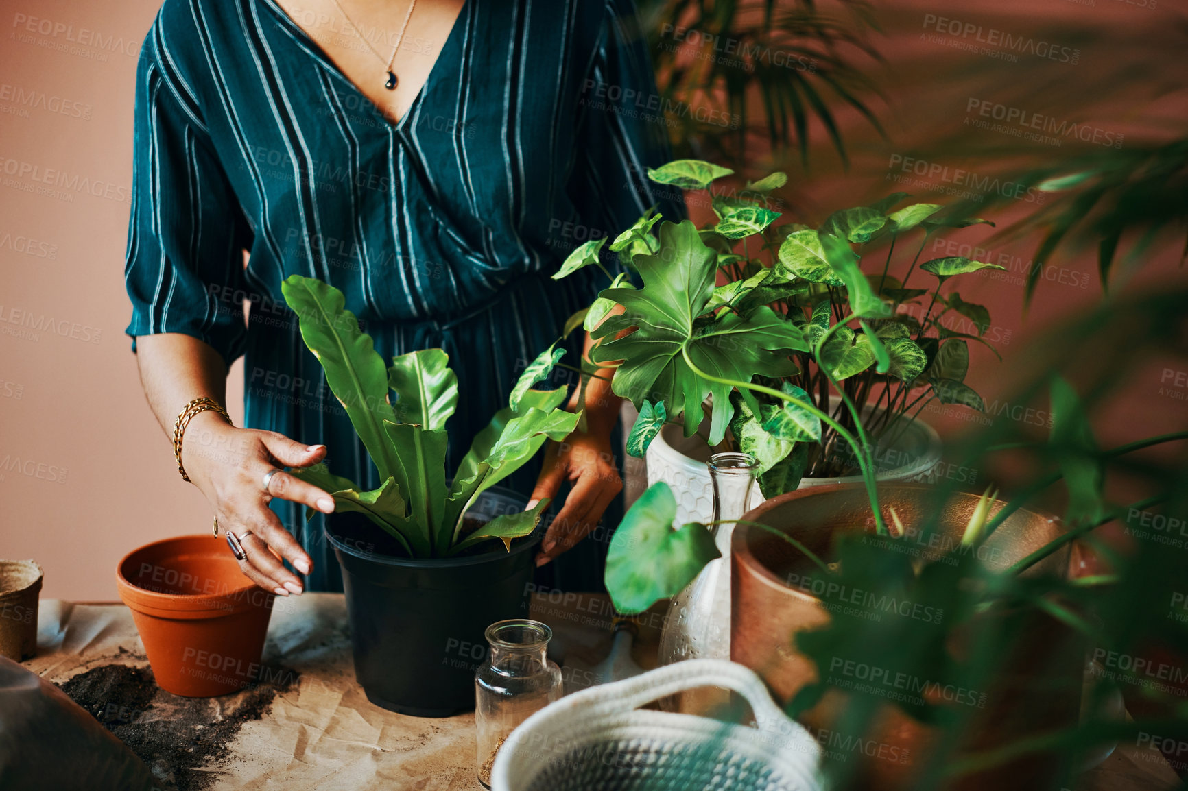 Buy stock photo Copped shot of an unrecognisable woman gardening at home