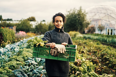 Buy stock photo Portrait of a young woman holding a crate of fresh produce on a farm