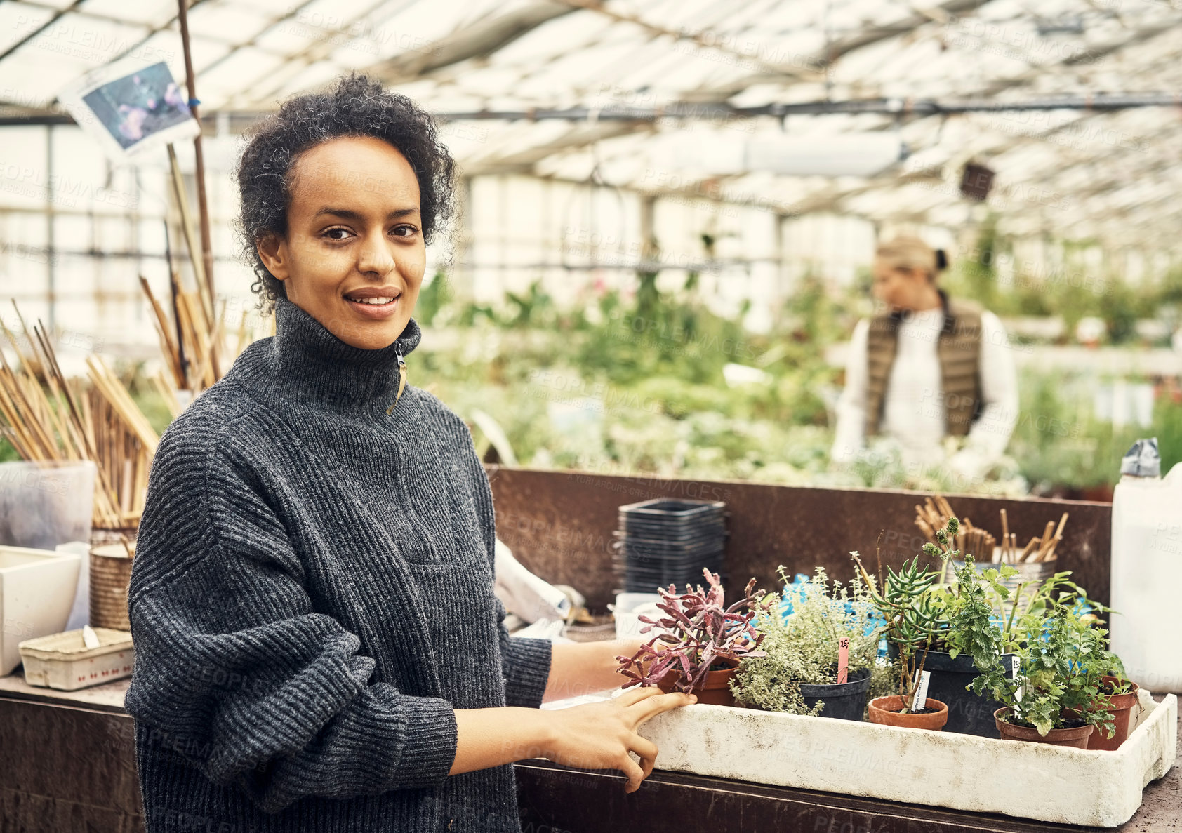 Buy stock photo Portrait of a young woman working in a greenhouse
