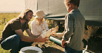 Buy stock photo Shot of a family feeding chickens on their farm