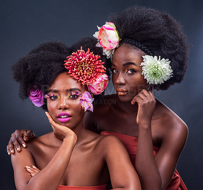 Buy stock photo Cropped shot of two beautiful women posing together with flowers in their hair