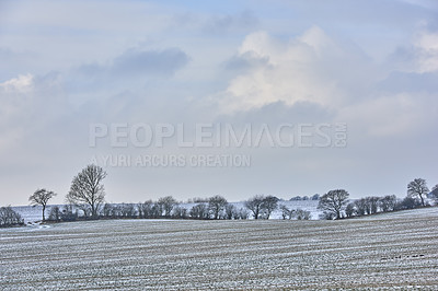 Buy stock photo Danish farmland in wintertime