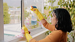 Keep your windows clean and the light shine in
