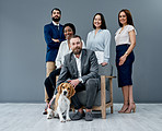 Pets in the workplace reduce stress and nurture productivity