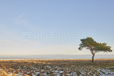 Buy stock photo Photos of Danish winter at the coast of Kattegat.