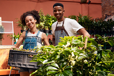 Buy stock photo Portrait of a young woman and man holding a crate of plants while working in a garden centre