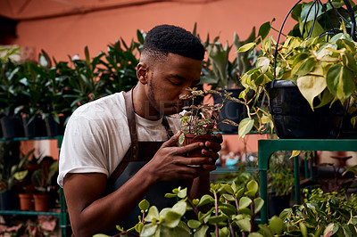 Buy stock photo Shot of a young man smelling a plant while working in a garden centre