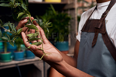 Buy stock photo Shot of an unrecognisable man working with plants in a garden centre