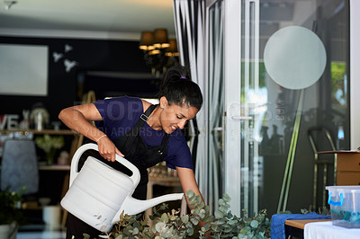 Buy stock photo Shot of a young woman watering the plants at work in a floral store