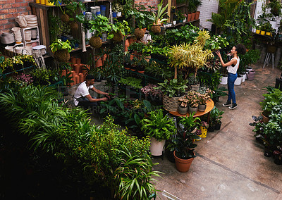 Buy stock photo Shot of two work colleagues working inside a plant nursery