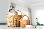 Bunny kisses, Easter wishes