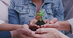Growth stems from commitment and care